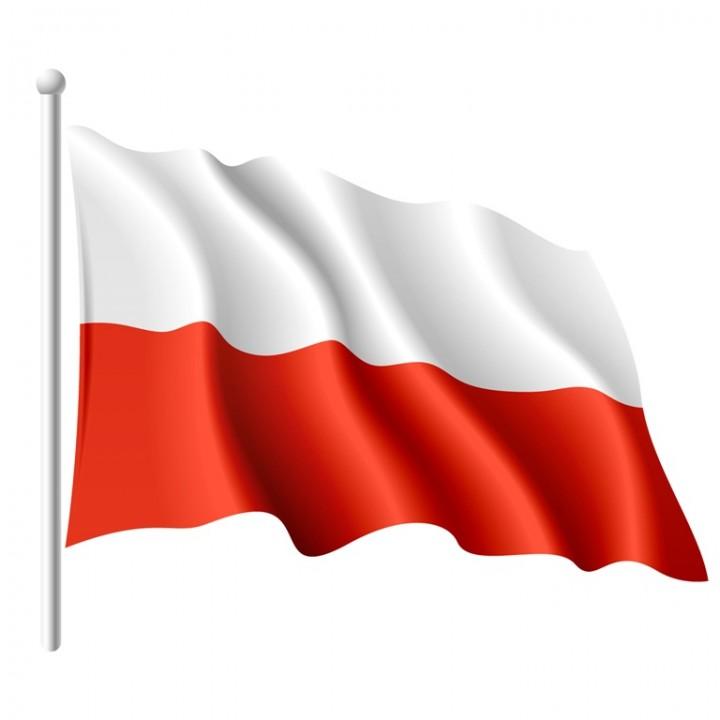 Znalezione obrazy dla zapytania flaga rp