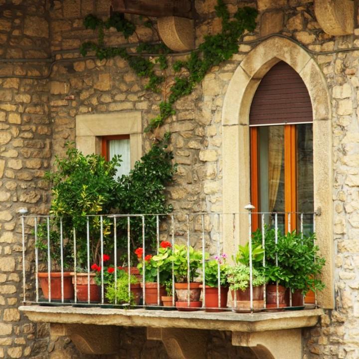 3 Balcony Garden Designs For Inspiration: Rośliny Balkonowe Odporne Na Suszę I Upały